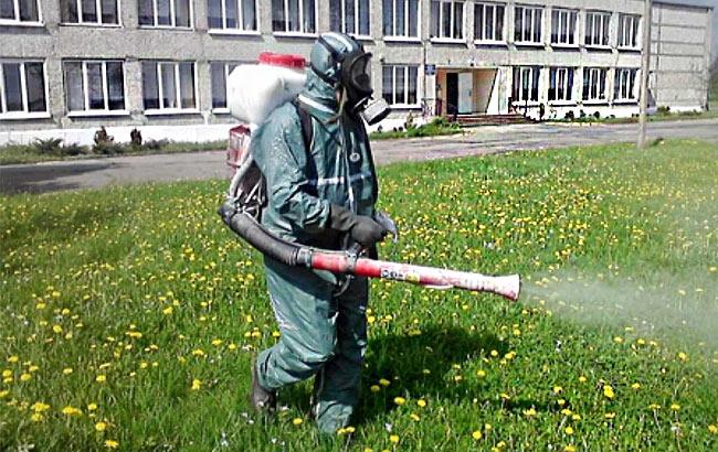 Уничтожение клещей в санаториях